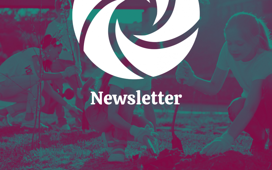 BCACHC Newsletter: Fall 2020 Special Election Edition